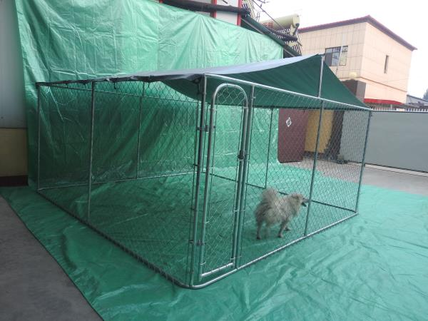 large pet cage chain link dog kennel