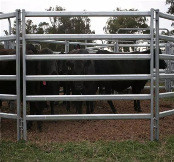 Horse Cow Sheep Fence Panels For Sale